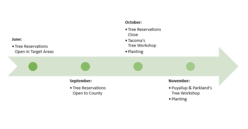 Tree Sale Timeline Graphic
