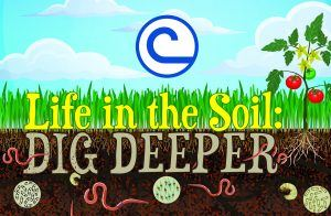 Soil Poster Contest icon