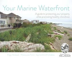 Your Marine Waterfront_Image