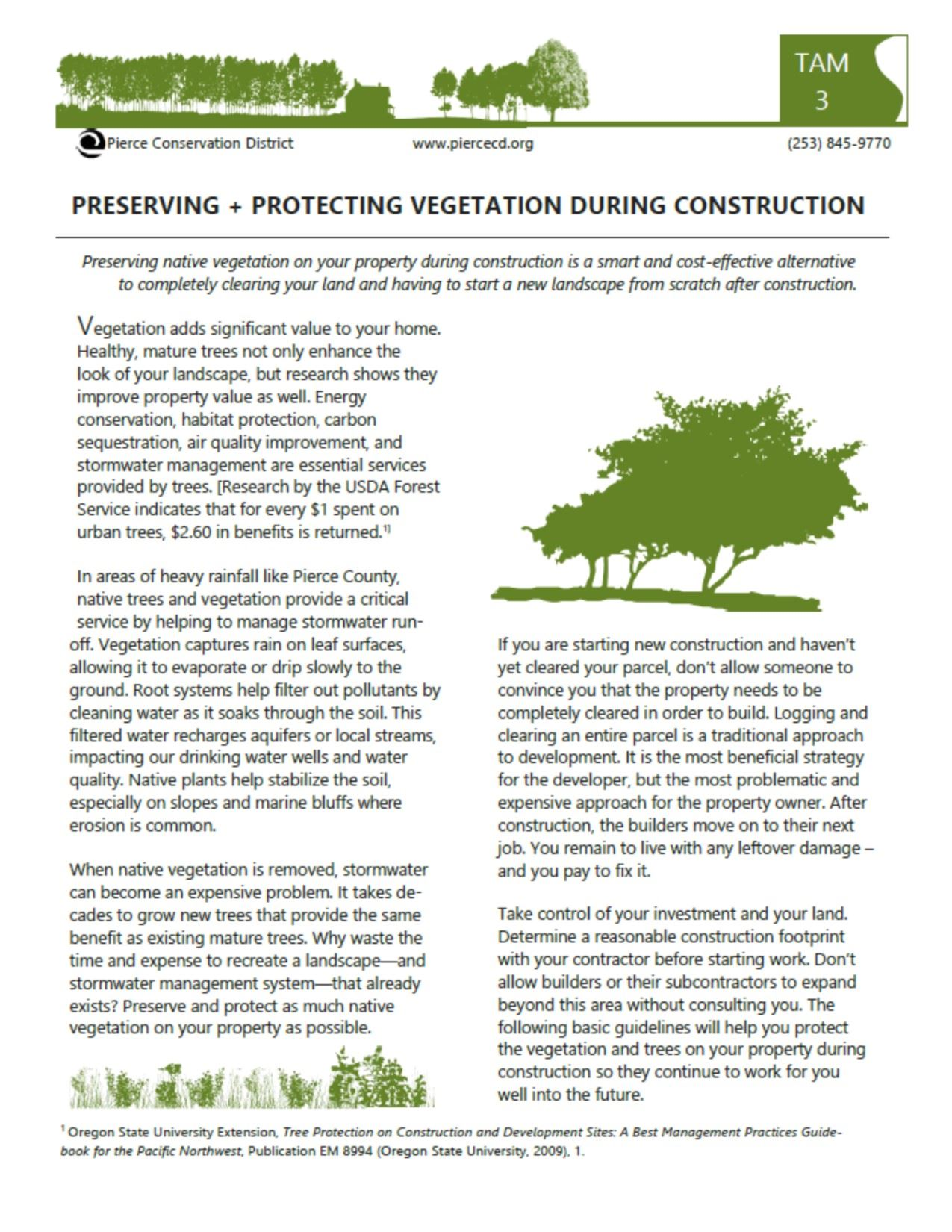 Protecting trees and veg during construction