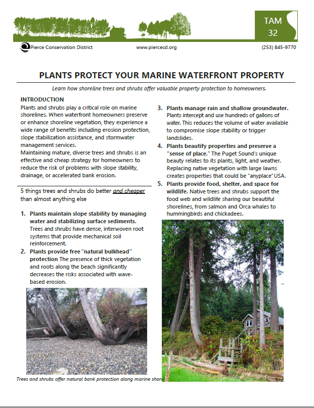 Preview_plans protect shorelines