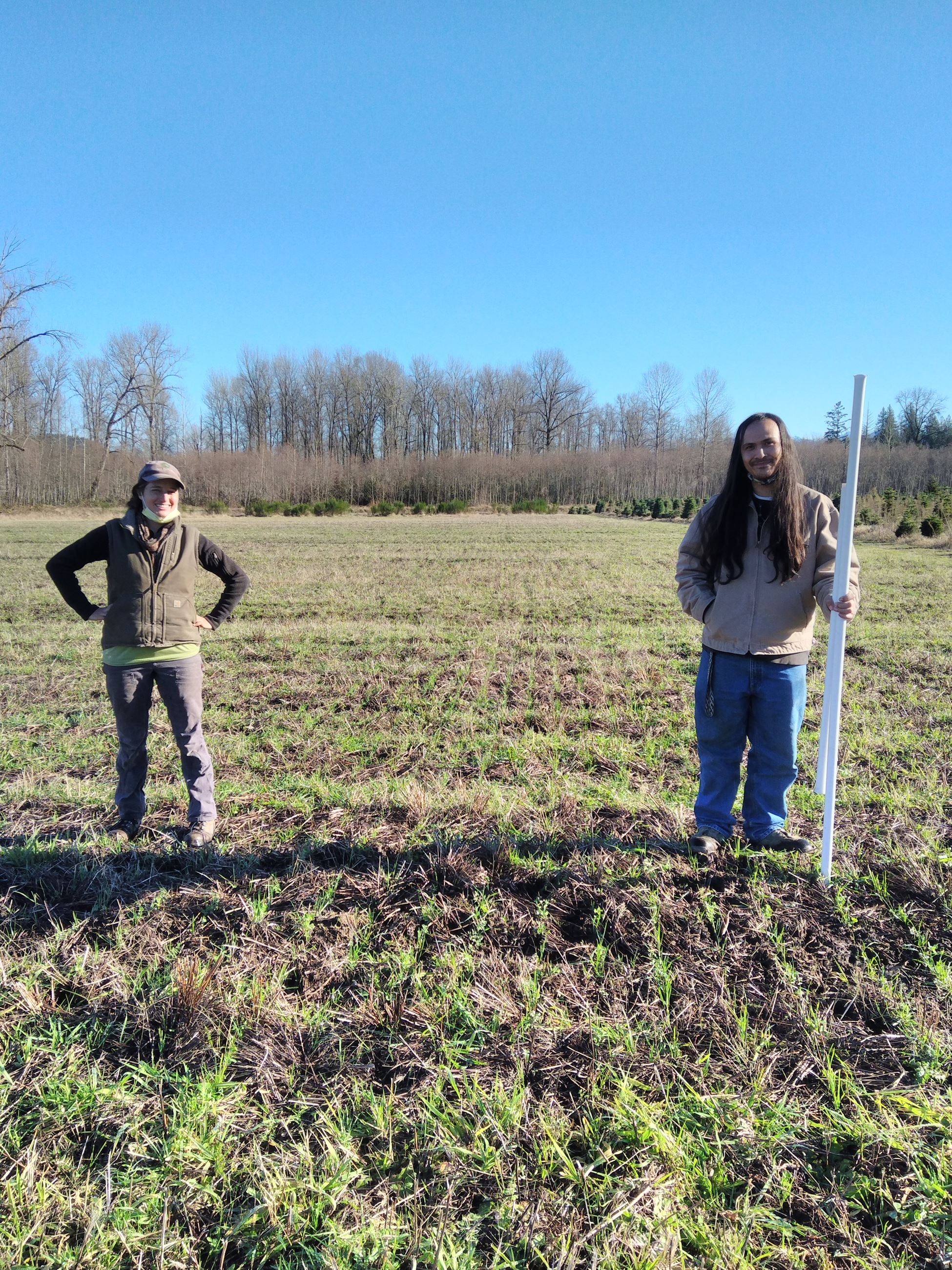 Veterans Farm - cost share cover crop seeded with no-till drill