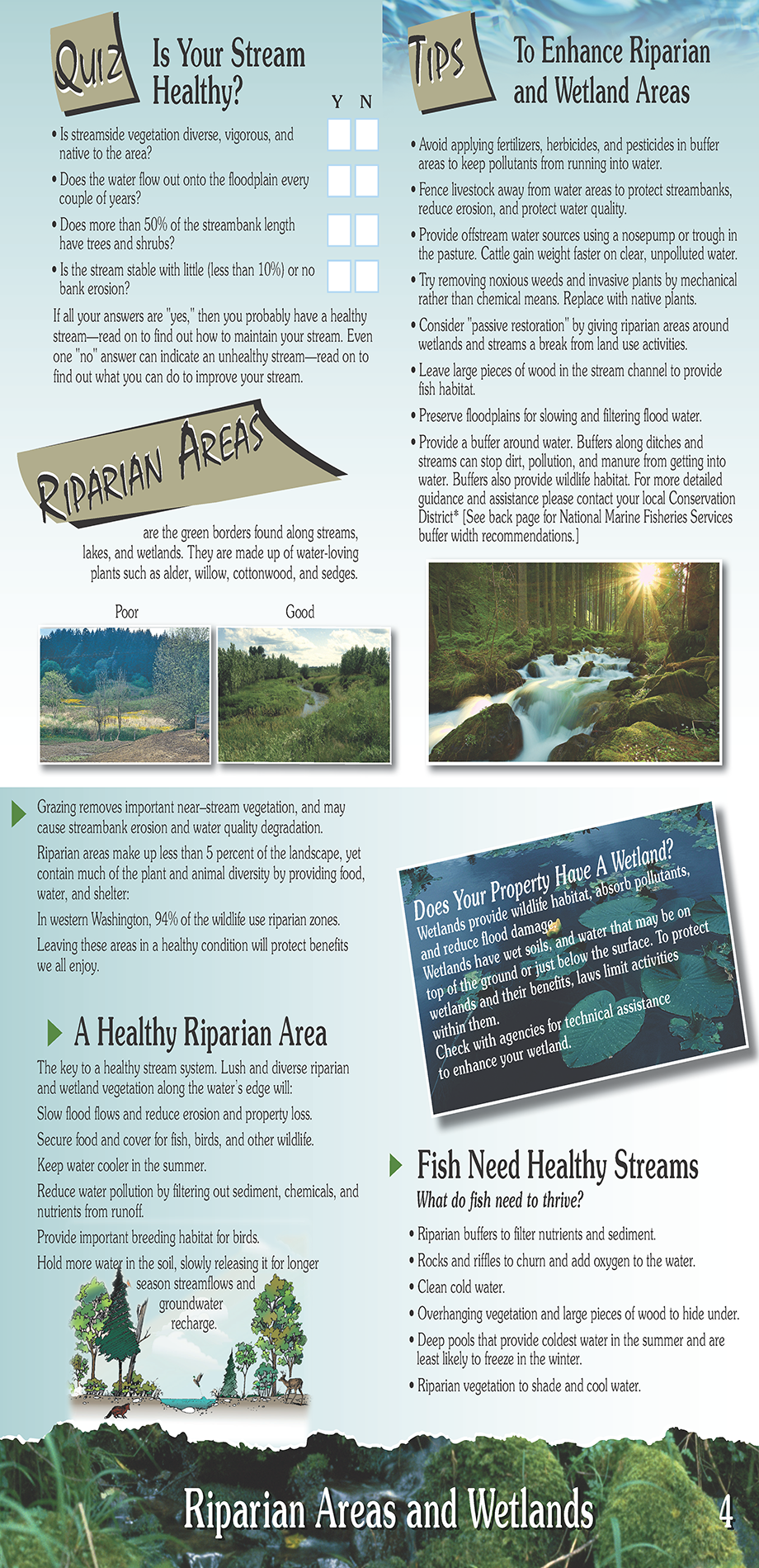 TIPS Brochure: Riparian Areas | Pierce Conservation District, WA