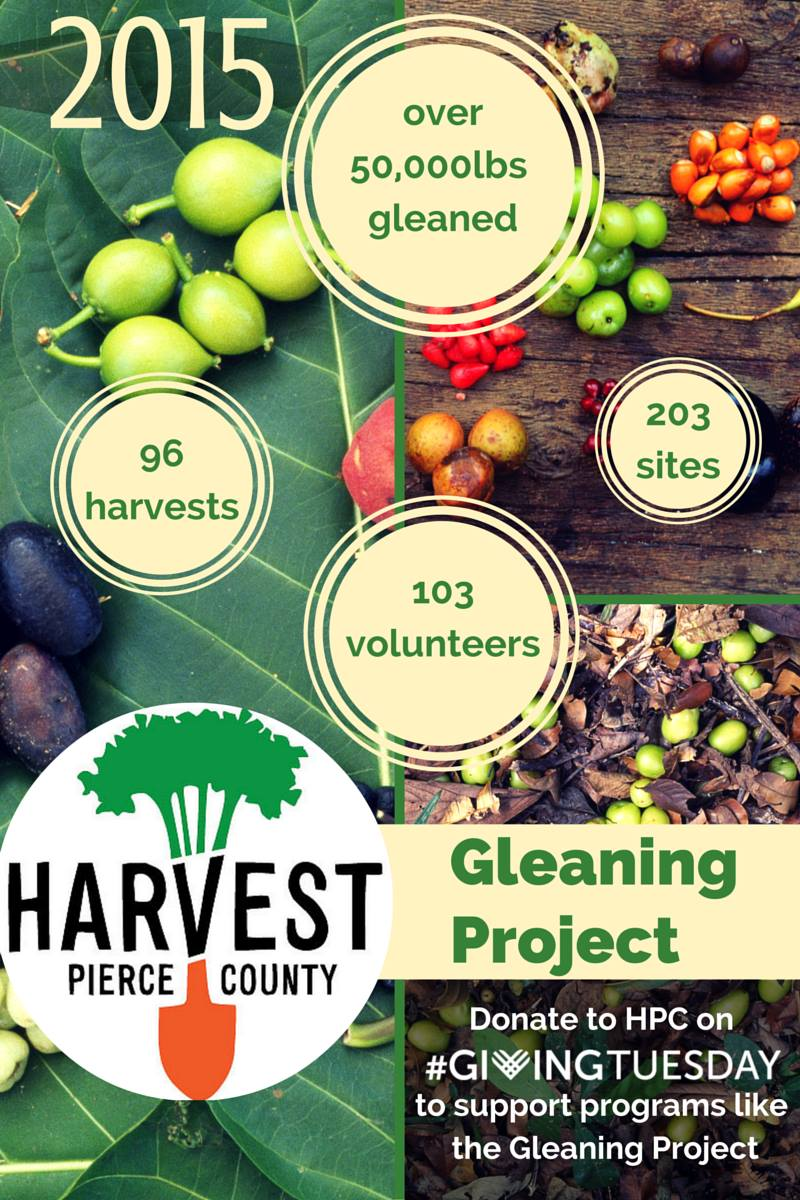 Gleaning Report