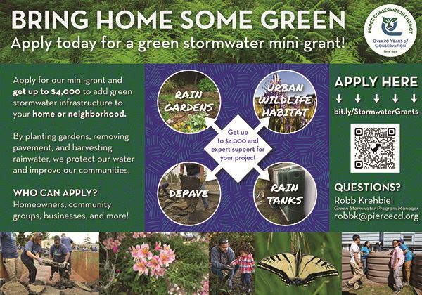 Green Infrasctucture Mini Grant Print Ad (004)