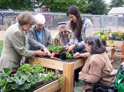 A group of women gardening an above ground garden